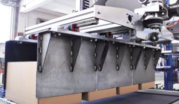 Single Column Palletization System full